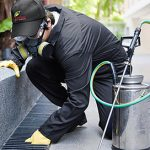 Expert Pest Prevention Technicians | Command Pest Control