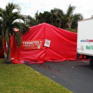 pompano beach pest control tenting a house