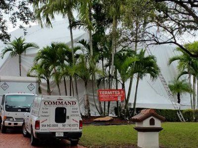 vehicles white fumigation tent command pest control