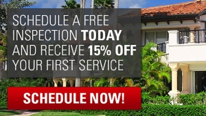 schedule a free inspection with best termite control company and get 15% off first service