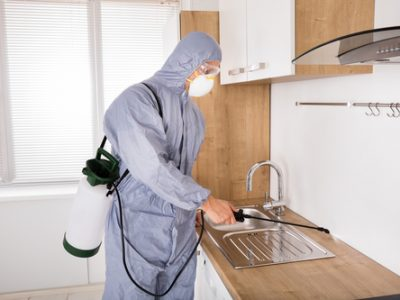 Pest Control Experts South Florida, Command Pest Control