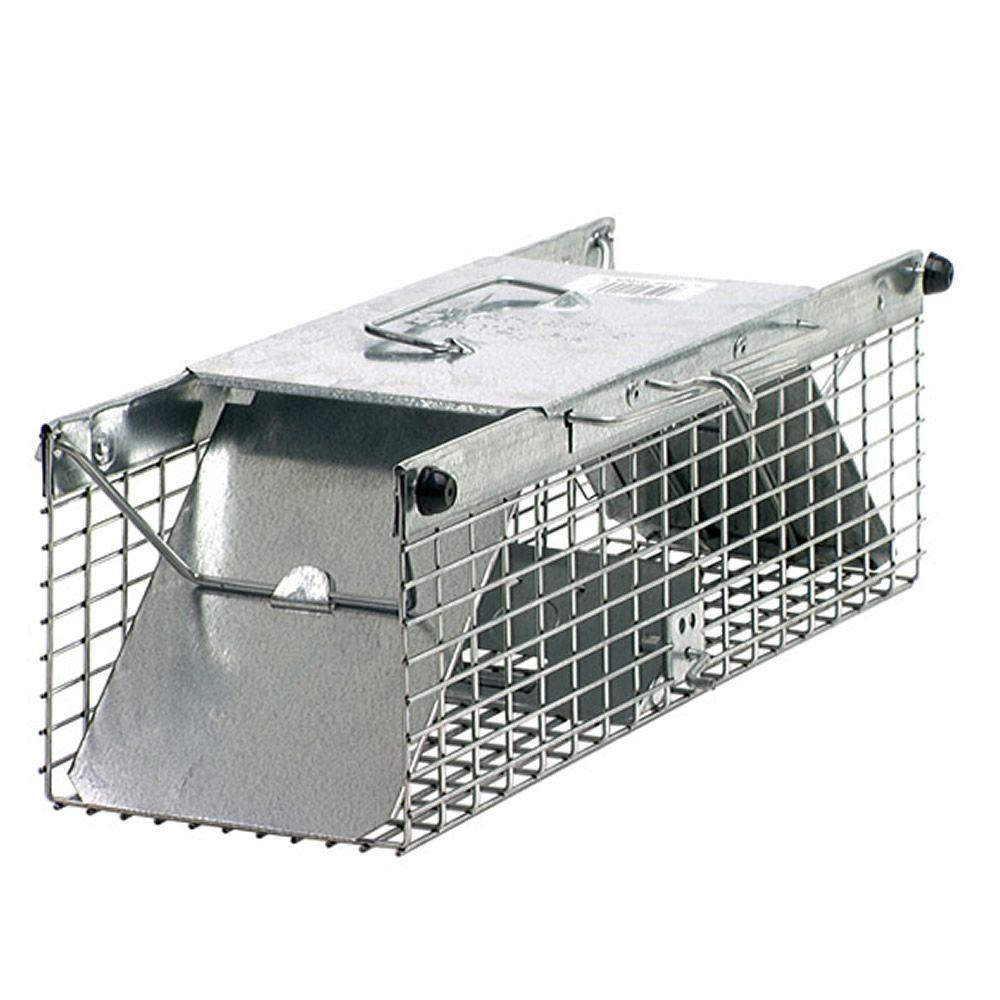 Use these for rodent and pest control