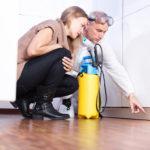Benefits Of Hiring A Professional Pest Control Service, pest control south florida, pest control near me