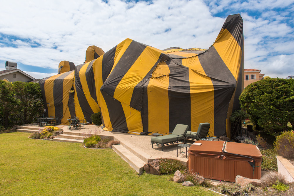 & How To Prepare Your Home For Termite Tenting | Command Pest Control