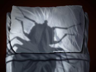 south florida pest control, bed bug treatment